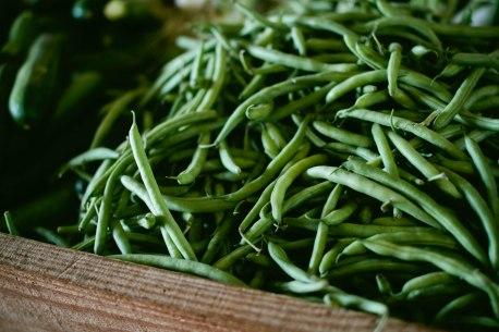 green beans - Sonja Langford